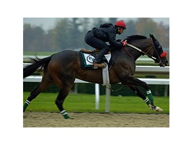 "Lava Man and Tony Romero in 2006.<br><a target=""blank"" href=""http://www.bloodhorse.com/horse-racing/photo-store?ref=http%3A%2F%2Fpictopia.com%2Fperl%2Fgal%3Fprovider_id%3D368%26ptp_photo_id%3D619526%26ref%3Dstory"">Order This Photo</a>"