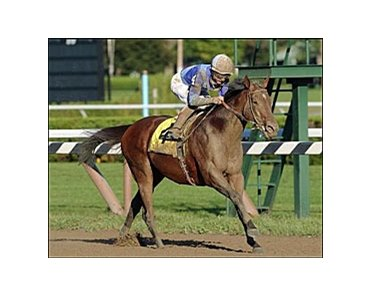 Aldebaran captures the Forego Stakes, Sunday at Saratoga.