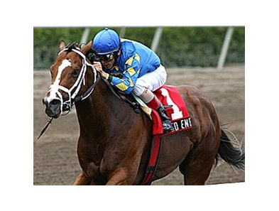 Keyed Entry won the Deputy Minister Handicap (gr. III) last February at Gulfstream Park.