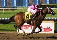 Mutuel Field Favored in First Round of Derby Future Wager