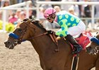 Sadler to Saddle Two in Turf Sprint