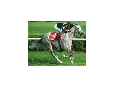 Gaviola, ridden by Jerry D. Bailey captures the Lake Placid Handicap at Saratoga Race Course