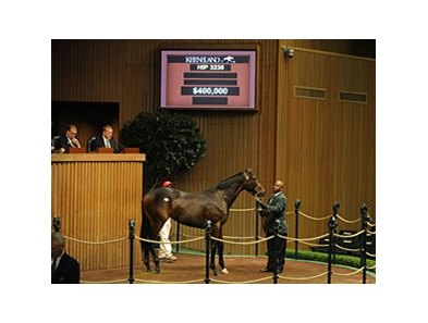 Hip 3238; filly; Tiznow - Katz Me If You Can by Storm Cat, topped day 9 of the Keeneland September yearling sale with a final bid of $400,000.