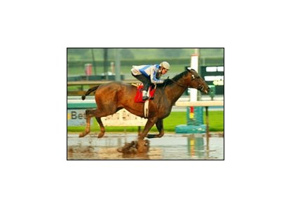 Congrats and jockey Tyler Baze sprint through the mud to win the San Pasqual Handicap, Saturday at Santa Anita.