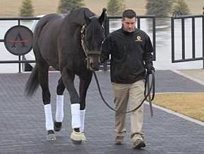 Einstein Arrives at Adena Springs