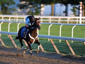 Rachel Alexandra in Bullet Work at Saratoga
