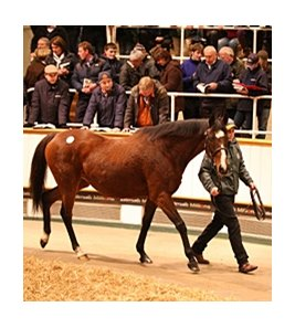 Twyla Tharp, lot 1511 and dam of The Fugue, sold for 1,700,000 guineas ($2,872,190).