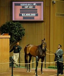 Mushka was the sales topper midway through the second day of the Keeneland November Sale.