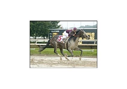 Grand Hombre splashes to victory in the Pennsylvania Derby.