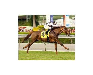 "Naissance Royale draws off in the Las Palmas.<br><a target=""blank"" href=""http://www.bloodhorse.com/horse-racing/photo-store?ref=http%3A%2F%2Fpictopia.com%2Fperl%2Fgal%3Fprovider_id%3D368%26ptp_photo_id%3D2692642%26ref%3Dstory"">Order This Photo</a>"