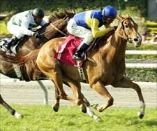 Megahertz Zips to Santa Barbara Three-Peat