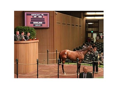 Hip 1082, filly, Smart Strike - My Miss Storm Cat by Sea of Secrets, brought $550,000 during the Sept. 16 session of the Keeneland September yearling sale.