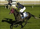 Aussie Rules Kicks Home in Shadwell Turf Mile