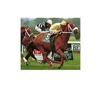 Val's Prince, shown winning the 1999 Turf Classic, has been at the center of an ownership dispute.