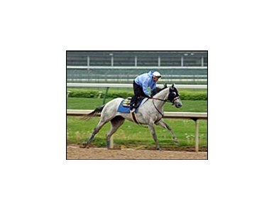 Preachinatthebar was equipped with blinkers during Thursday's workout.