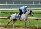 Preachinatthebar back in training, may return to action at Santa Anita.