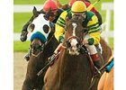 Unspoken Word seeks win in Tuzla after second-place finish in La Brea Stakes (gr. I).