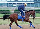 American Pharoah galloped 1 3/16 miles on the Churchill Downs main track May 23.