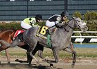 "R Betty Graybull<br><a target=""blank"" href=""http://www.bloodhorse.com/horse-racing/photo-store?ref=http%3A%2F%2Fpictopia.com%2Fperl%2Fgal%3Fprovider_id%3D368%26ptp_photo_id%3D9587283%26ref%3Dstory"">Order This Photo</a>"