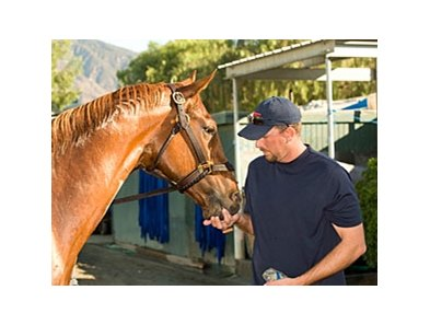 "Summer Bird with trainer Tim Ice.<br><a target=""blank"" href=""http://www.bloodhorse.com/horse-racing/photo-store?ref=http%3A%2F%2Fpictopia.com%2Fperl%2Fgal%3Fprovider_id%3D368%26ptp_photo_id%3D8604037%26ref%3Dstory"">Order This Photo</a>"