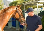 "Tim Ice, shown with Belmont winner Summer Bird, will move his stable to New York.<br><a target=""blank"" href=""http://www.bloodhorse.com/horse-racing/photo-store?ref=http%3A%2F%2Fpictopia.com%2Fperl%2Fgal%3Fprovider_id%3D368%26ptp_photo_id%3D8604037%26ref%3Dstory"">Order This Photo</a>"