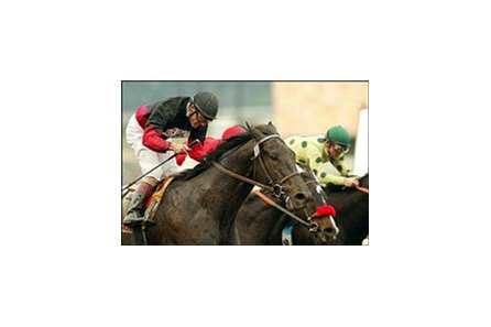 Rock Hard Ten carries Gary Stevens to victory in the Malibu Stakes during opening day at Santa Anita.