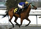 Helen Belen won the Valdale at Turfway by 15 lengths.