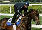 Bernardini, worked Friday at Saratoga in preparation for the Travers Stakes.