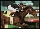 Spihonic, winning the Hollywood Futurity.