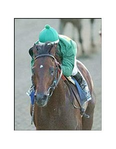 Mineshaft goes out on top.