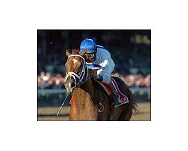 "Lawyer Ron<br><a target=""blank"" href=""http://www.bloodhorse.com/horse-racing/photo-store?ref=http%3A%2F%2Fpictopia.com%2Fperl%2Fgal%3Fprovider_id%3D368%26ptp_photo_id%3D2178603%26ref%3Dstory"">Order This Photo</a>"