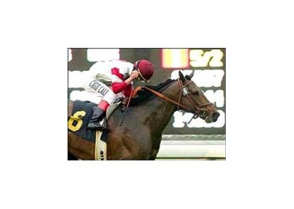 San Gabriel winner Badge of Silver races Saturday at Saratoga.