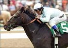 "After Market and Alex Solis win the Inglewood Handicap, Saturday at Hollywood Park.<br><a target=""blank"" href=""http://www.bloodhorse.com/horse-racing/photo-store?ref=http%3A%2F%2Fpictopia.com%2Fperl%2Fgal%3Fprovider_id%3D368%26ptp_photo_id%3D1088237%26ref%3Dstory"">Order This Photo</a>"