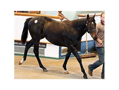 Lot 931 sold for 245,000 guineas ($413,035).