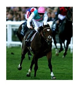 Frankel adds the Queen Elizabeth II Stakes to his impressive resume.