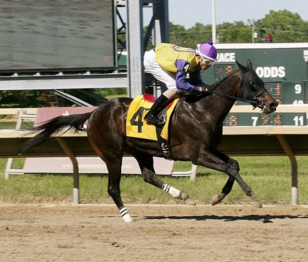Donita's Ruler captures the $75,000 My Juliet Stakes at Parx Racing in Pennsylvania.