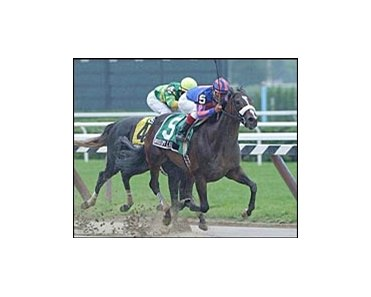 Whoopi Cat passes Unbridled Beauty to win the Adirondack.