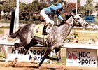Princess Rooney won the inaugural Breeders' Cup Distaff (gr. I)
