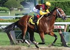 "Discreetly Mine won the grade I King's Bishop Stakes on Aug 28.<br><a target=""blank"" href=""http://www.bloodhorse.com/horse-racing/photo-store?ref=http%3A%2F%2Fpictopia.com%2Fperl%2Fgal%3Fprovider_id%3D368%26ptp_photo_id%3D9166915%26ref%3Dstory"">Order This Photo</a>"