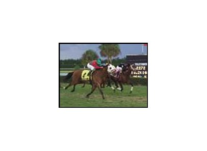 Profit Option posted an upset victory in the W. L. McKnight Handicap.