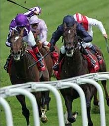 Favored Scorpion Out of Melbourne Cup