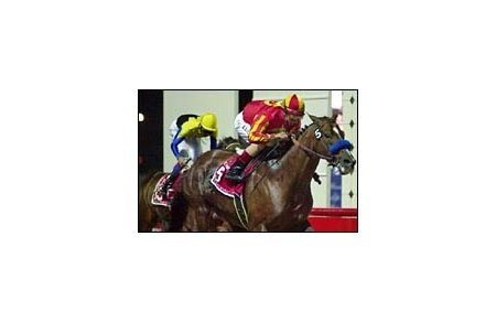 Captain Steve defeating To the Victory in the $6-million Dubai World Cup. The victory was the third for jockey Jerry Bailey in the world's richest race that was run for the sixth time Saturday.