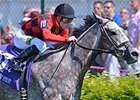 Power Alert Seeks Turf Sprint Rebound
