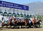 $144.3 Million Wagered on Breeders' Cup Races