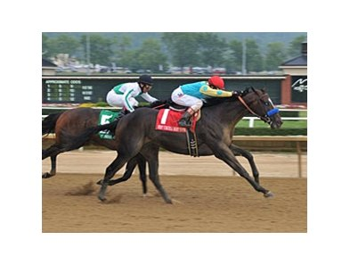 Prayer for Relief comes running late to win the West Virginia Derby.