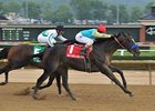 Prayer For Relief won the 2011 West Virginia Derby.