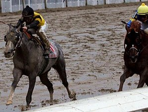 Macho Again Packs Top Weight in Alysheba