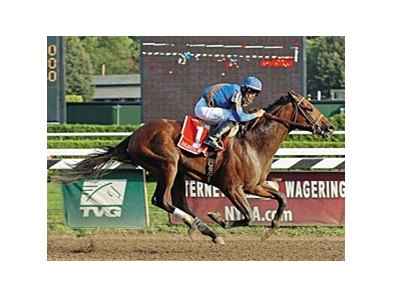 Majestic Warrior, impressive winner of the 2007 Hopeful Stakes (gr. I) at Saratoga, has been retired from racing for stallion duty in 2009 at Ashford Stud near Versailles, Ky.