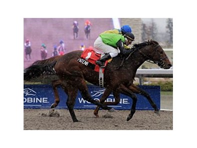 Patena fights off Hooh Why to take the Display Stakes at Woodbine.