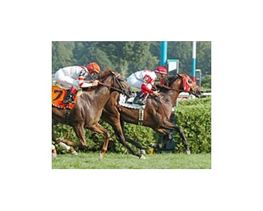 Nothing to Lose outruns Silver Tree in the stretch to take the Fourstardave, Saturday at Saratoga.